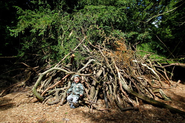 Den in the woods, Clumber Park