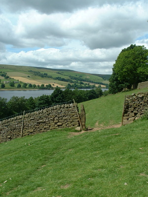 Fields above Gouthwaite Reservoir