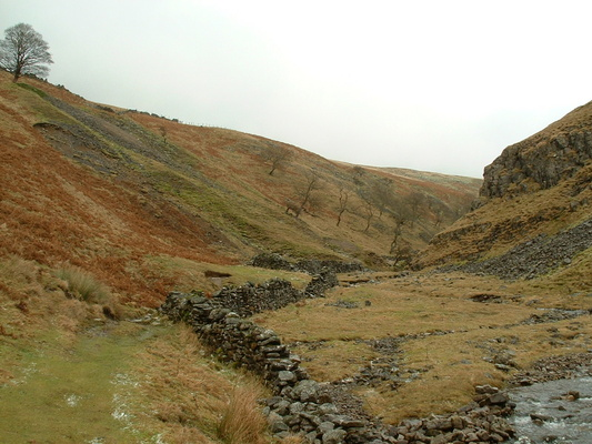 Looking uphill beside Dowber Gill beck